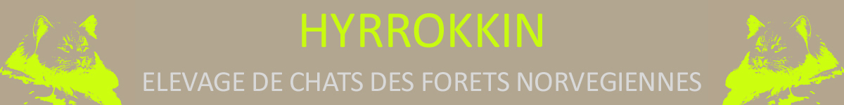 HYRROKKIN